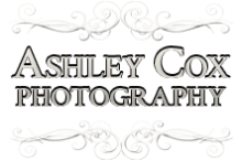 Senior Portraits Archives - Ashley Cox Photography